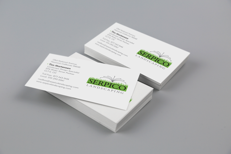 business card special printing - Business Card Paper